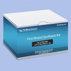 FirstStrandSynthesisKit